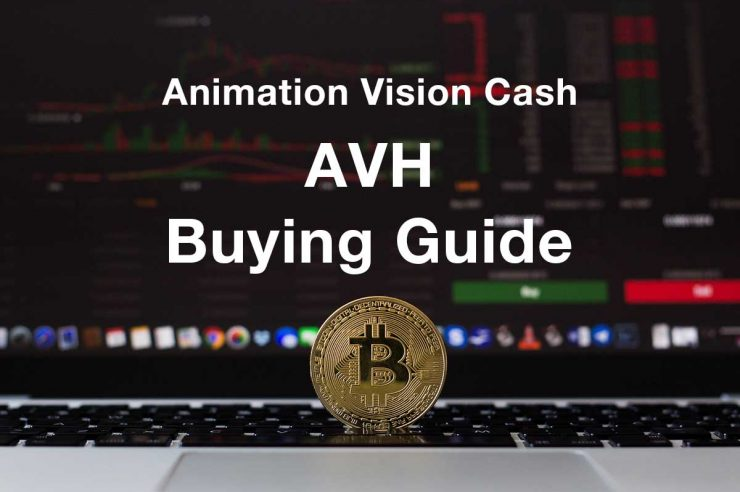 how where to buy animation vision cash