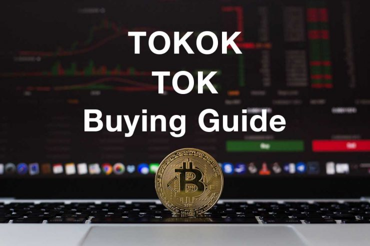 how where to buy tokok